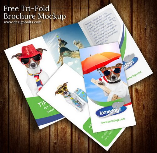 Download 10 Beautiful And Free Brochure Templates XDesigns – Psd Brochure Design Inspiration
