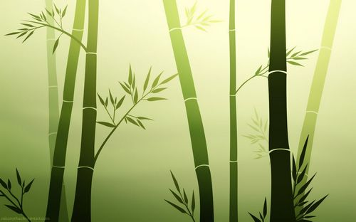 Unique  minimalistic bamboo wallpaper