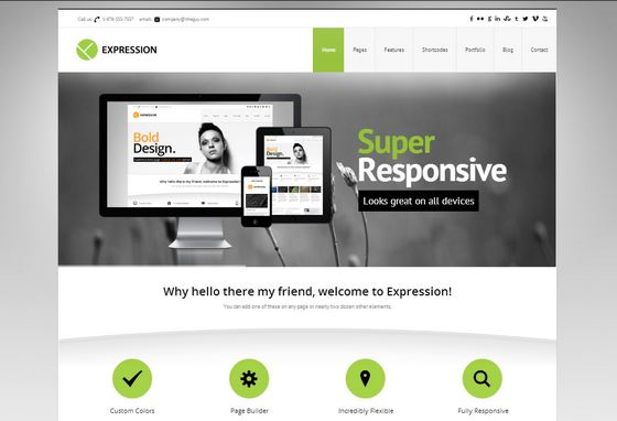 34 handpicked responsive business wordpress themes xdesigns expression responsive business wordpress theme live flashek Choice Image