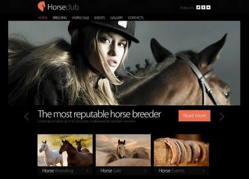 50 horse club