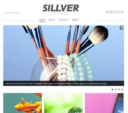 Silver Photography Theme