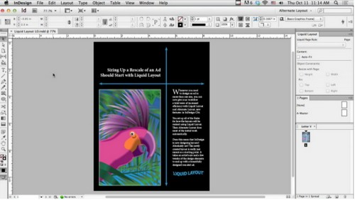 Using Liquid Layout in InDesign CS6 (Video Tutorial)