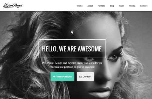 MicroPage - Responsive One Page WordPress Theme