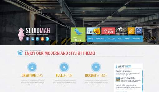 SquidMag - Responsive Multi-Purpose Theme