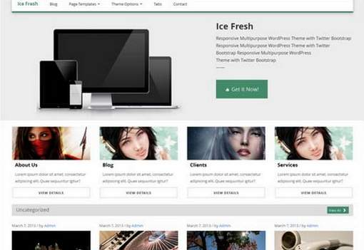 Ice Fresh Responsive WP Theme