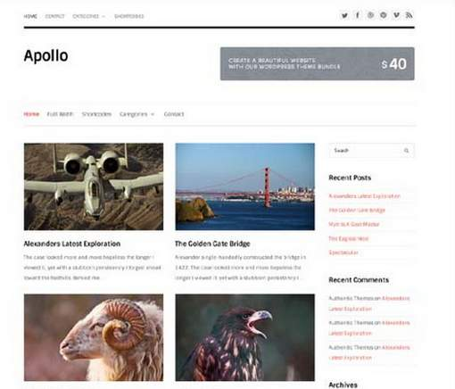 Free Minimalist WordPress Theme: Apollo