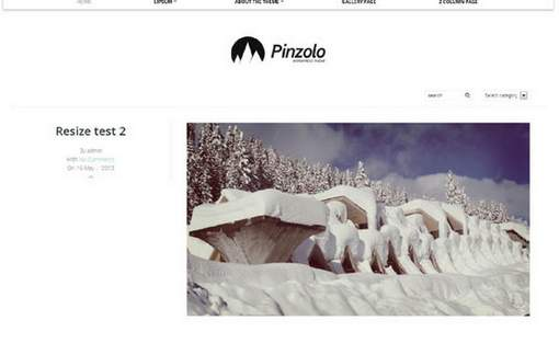 Pinzolo responsive WordPress theme