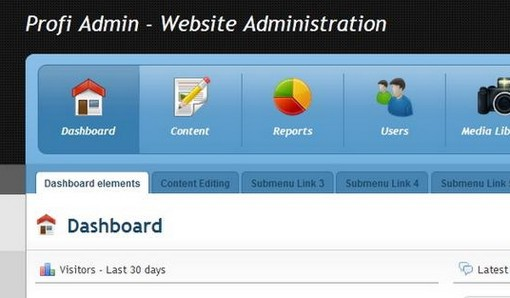 profi admin website administration template - Web Administration Sample Resume