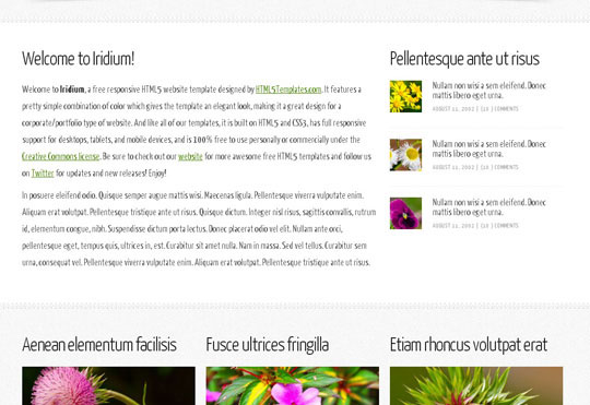 Download Free Iridium HTML5 Website Template