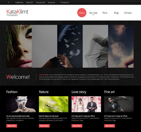 Download Free Photography HTML5 Website Template