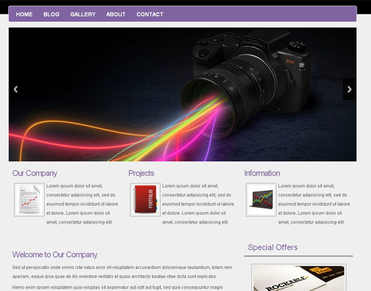 Download Free zBamboo HTML5 Website Template