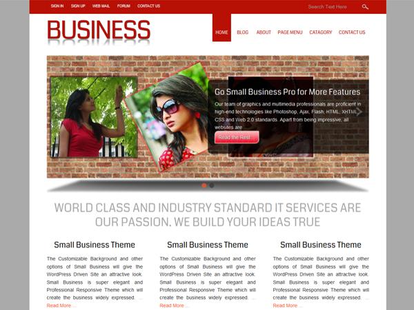105+ Corporate WordPress Themes (2014 Edition) - XDesigns