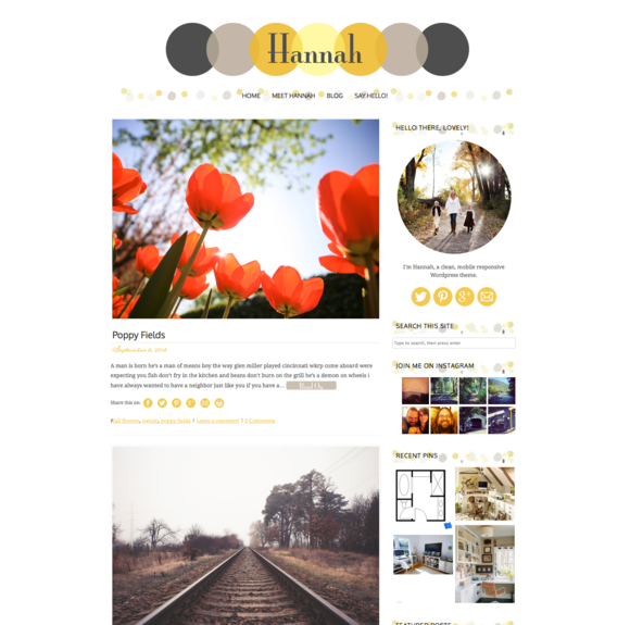 hannah, a responsive wordpress theme