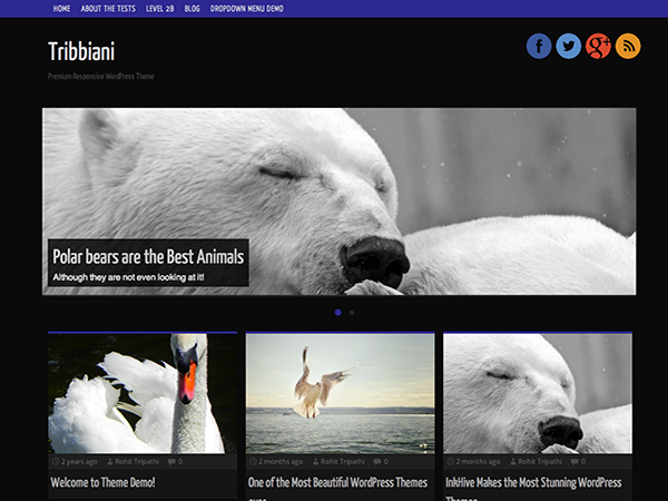 free tribbiani blog wordpress theme
