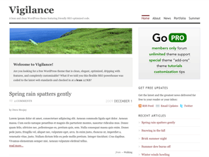 free vigilance blog wordpress theme