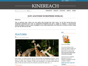 free front page blog wordpress theme