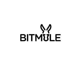 bitmule logo design