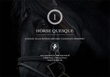 equestrian screenshot