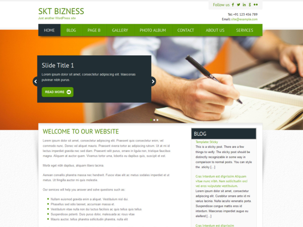 skt bizness wordpress theme