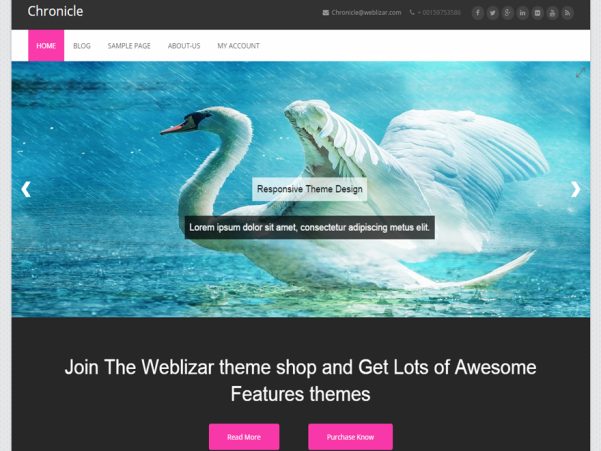 chronicle wordpress theme