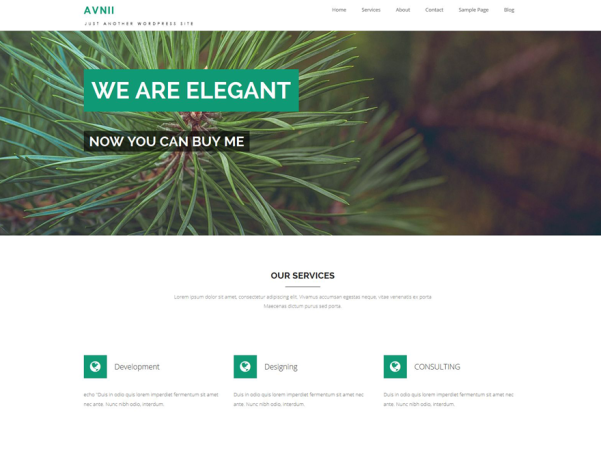 avnii wordpress theme