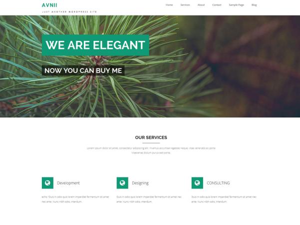 avnii wordpress theme