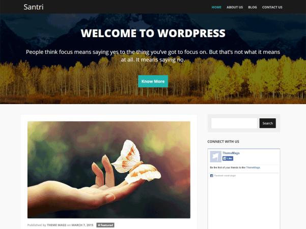 santri wordpress theme