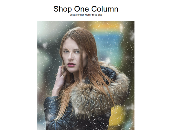 shop one column wordpress theme