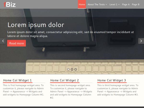 fbiz wordpress theme