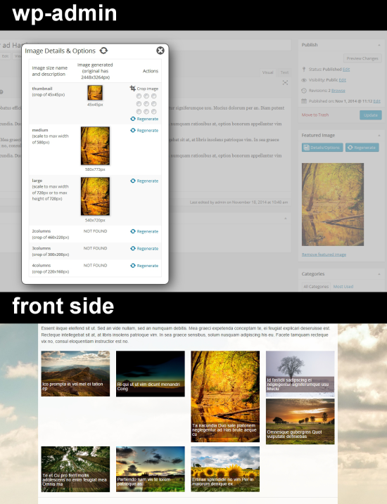 image regenerate & select crop wordpress plugin