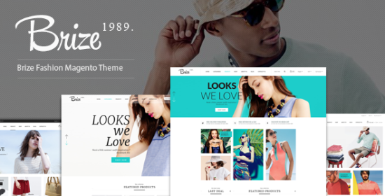 brize responsive magento fashion theme