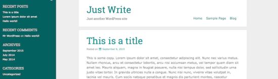 just write wordpress theme