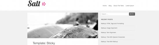 salt blogger wordpress theme
