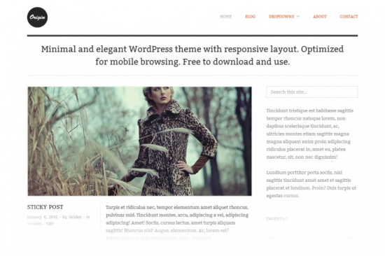 origin responsive minimalist wordpress theme
