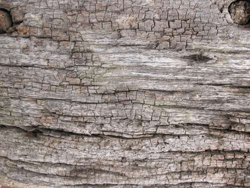 old-wood-texture-3