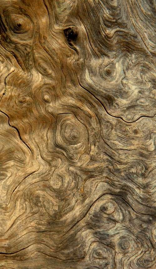 wood-stock-1
