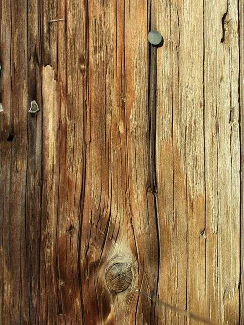 wood-texture-stock