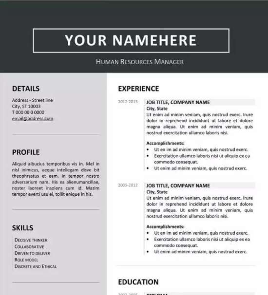 Photo Resume Templates Professional Cv Formats: 12 Professional Resume Templates In Word Format