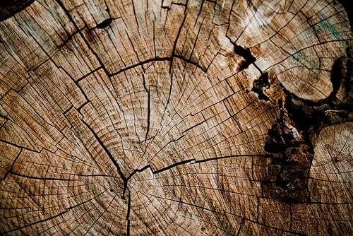 wood-grain-texture