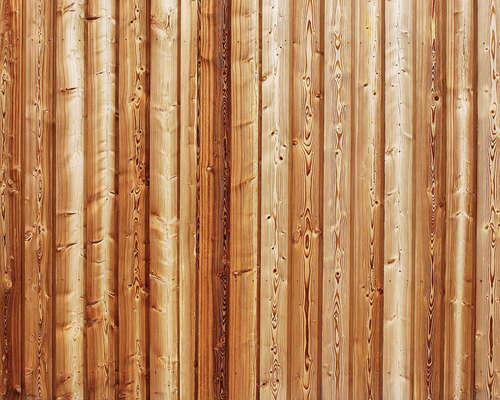 rear-wood-texture