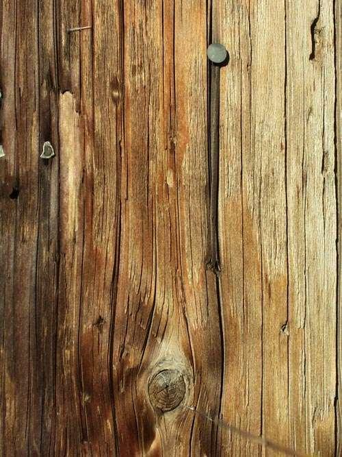 door-wood-texture