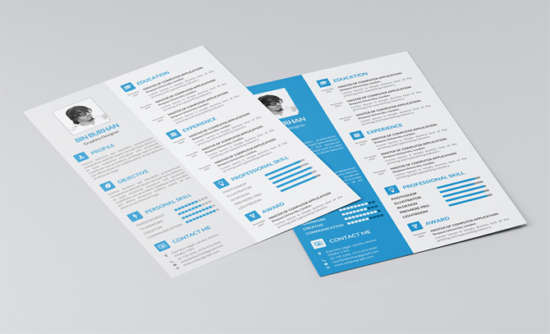 freebie_resume_template