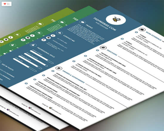 graphic_designer_resume_template_psd
