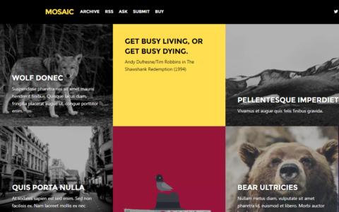Mosaicac tumblr portfolio theme