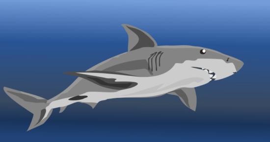 shark_clipart