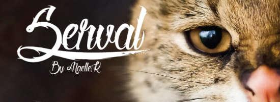 serval_tattoo_font