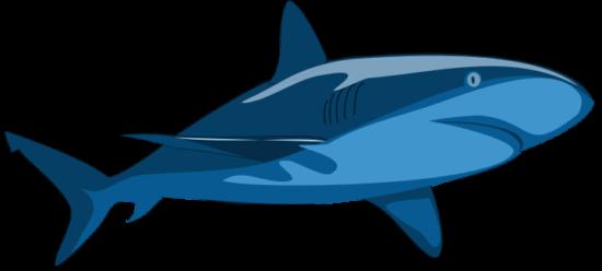 shark_pure