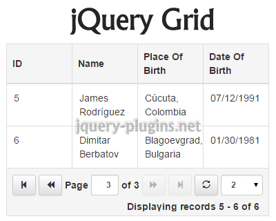 jquery_grid_plugin