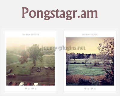 pongstagr.am_display_instagram_media_on_your_website