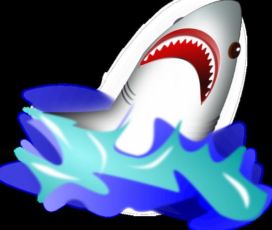 wsnaccad_shark